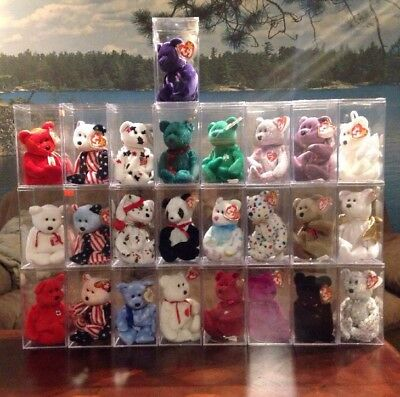 Ty Beanie Baby Bear Lot In Cases 25 Of Them