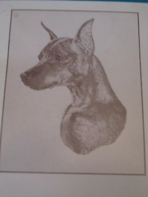 Miniature Pinscher MinPin Note Cards by Chris Lewis Brown - Pk of 5 cards