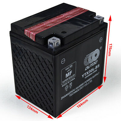 YTX30L-BS High Battery For Harley-Davidson FL, FLH Series (Touring) Polaris