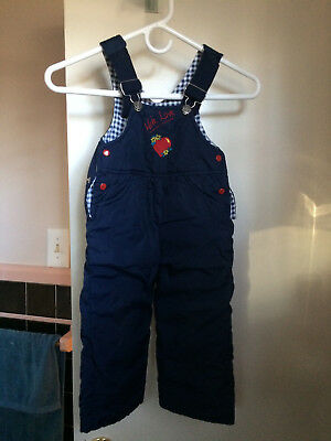 Girls Blue Insulated Lined Pants Bib Overalls Size 24 Months