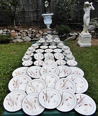 64 Piece- Midwinter, 1972  Wild Oats Dinner set, 8 persons- immaculate condition