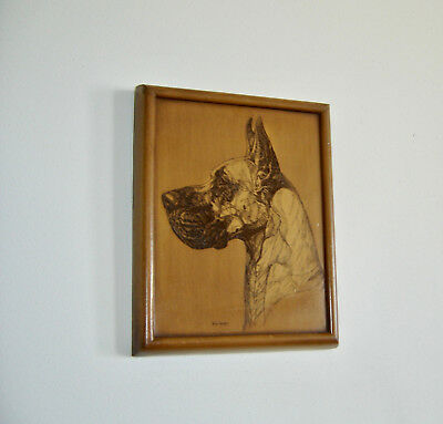 Great Dane Dog Art Etching, Signed by Artist, Highly Collectible Vintage Art!