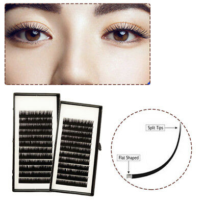 Lashview Individual Matte Ellipse Flat Eyelash Extensions 0.15 C D Soft Eye Lash