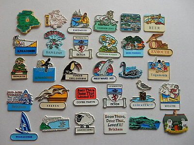 One Selected Souvenir Fridge Magnet from Devon / mostly rubber