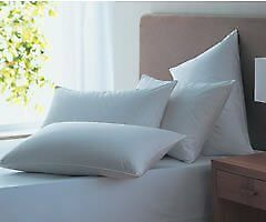 Luxury Twin Pack King Size Extra Large Soft Touch Microfibre Pillows 47cm x 90cm