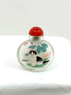 Chinese Glass Snuff Bottle Reverse Painted Cats - One Named Serena