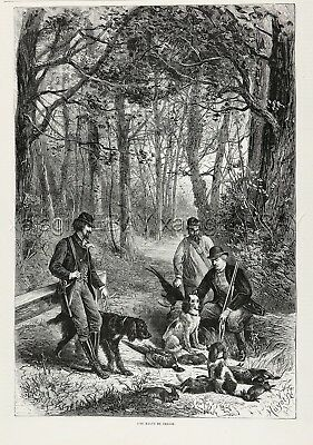 Dog Gordon Setter & Springer Spaniels after Hunt, 1870s Antique Engraving Print