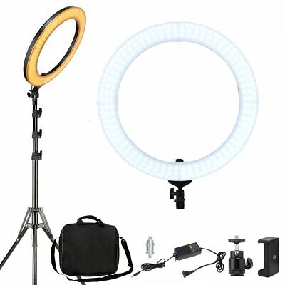 "19"" SMD LED Ring Light Dimmable 5500K Continuous Lighting for Photography camera"