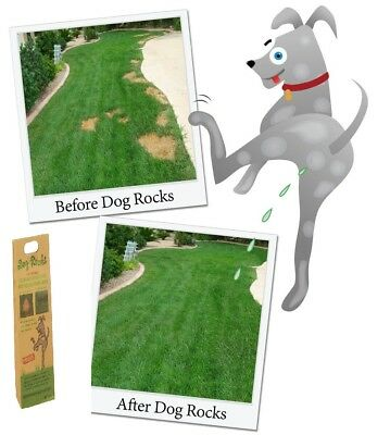 Lawn Protecting Dog Rocks Prevents Urine Burns Patches on Lawn Grass 200g