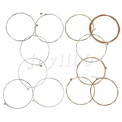 12-String Acoustic Guitar Strings Replacement Set