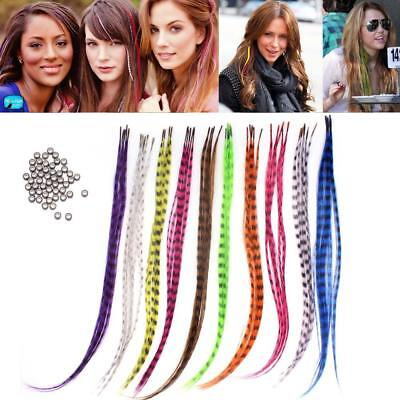 """50pcs Grizzly synthetic Feather hair Extensions 16"""" with 50 beads for free EH"""