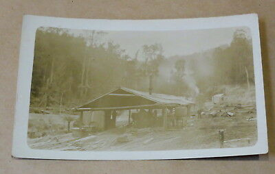 Antique Used Postcard 1914 Australian Bush Logging Camp Real Photo