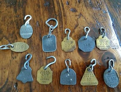 11 Vintage Massachusetts Dog License Tags 1936 -1955