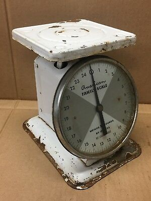 VINTAGE ANTIQUE AMERICAN FAMILY 25 Pound Kitchen Counter Scale