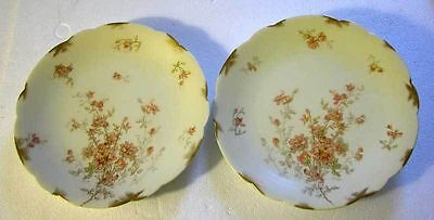 A Fine Antique French Pair Of Plates Produced By D&C Limoges France (1894-1900)