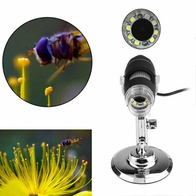 8 LED USB 500X Microscope Endoscope Digital Magnifier Video Camera With St TD