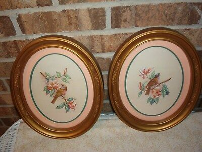 Set of 2 Framed Matted Oval Bird pictures Flowers
