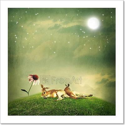 Kangaroo Couple Relaxing On Hilltop Art Print Home Decor Wall Art Poster - F