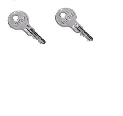 2 E-Z-GO (1982-Up) Gas and Electric Golf Cart Replacement Keys