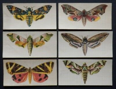 BUTTERFLIES and MOTHS Large Silks issued 1924 by R J Lea COMPLETE SET OF 6