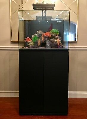 45 Gallon JBJ Aquarium with LED Light and Stand Bundle in Good Condition