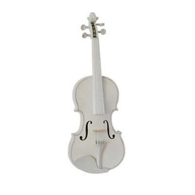 D60 Handmade 4/4 Full Size Wooden Violin Beginners Practice Musical Instrument M