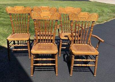 Oak Dining Chairs Used