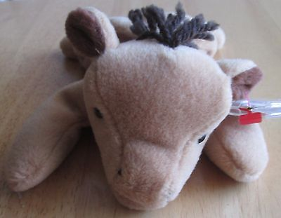 Ty beanie babies derby the horse with out star on mane, great condition