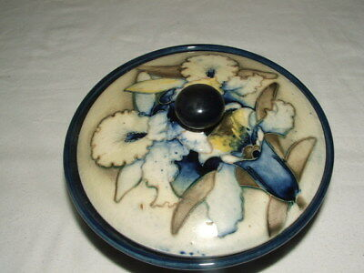 Moorcroft Very Rare Colourway Frilled Slipper Orchid Lidded Jar Truly Fabulous