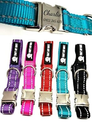 Metal Buckle Nylon reflective dog collar, personalised engraved THAT'S MY MUTT