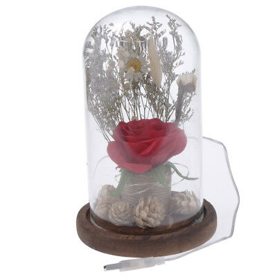 Enchanted LED Rose in Glass Dome for Wedding Anniversary, Mothers Day