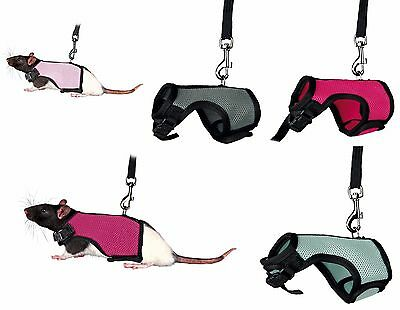 Rat Harness Full Body Adjustable Harness & Lead Set for Rats Various Colours