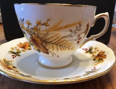 Royal Vale Bone China tea cup and saucer Fall Leaves