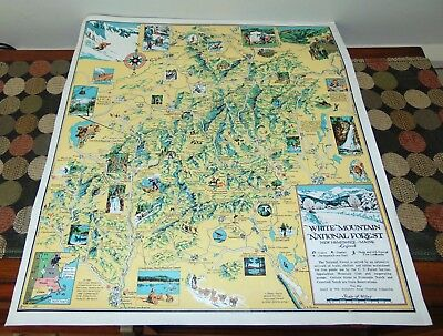 VTG C1940 WHITE MOUNTAIN NATIONAL FOREST Poster MAP New Hampshire MAINE