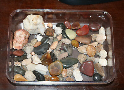 Polished Stones Minerals Fossil Collection Amazing Exciting