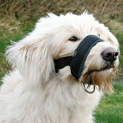 L Dog Muzzle Loop with D-Ring for Head Lead Fully Adjustable Padded Comfortable