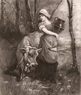 COW Guernsey Sark Dairy Cattle & MilkMaid Maiden, Huge Folio-Sized 1880s Print