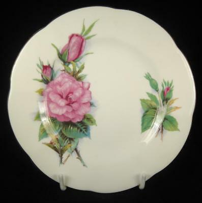 Roslyn 'Wheatcroft Roses - Prelude' Fine Bone China Side Plate