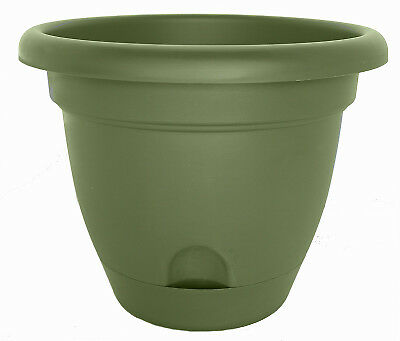 Bloem Lwb1842 Lucca Self Watering Plastic Window Box Planter Living