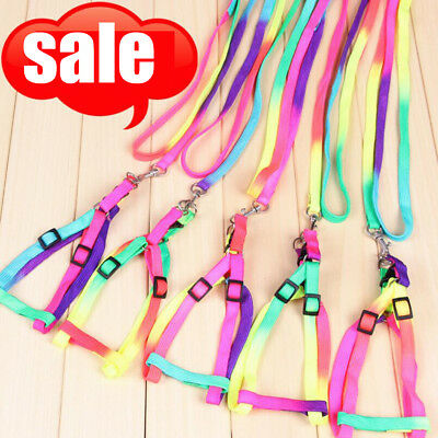 Adjustable Pet Small Dog Puppy Cat Kitten Nylon Harness Collar Leash Lead LG
