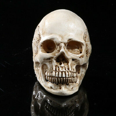 Human Skull Decor Prop Skeleton Resin Head Halloween Coffee Bar Ornaments