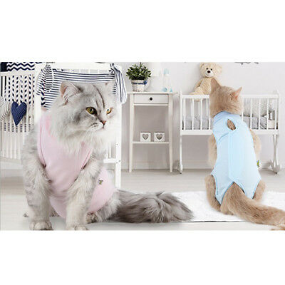 After Shaving Daily Wear Recovery Suit for Cat Dog Pet Clothes