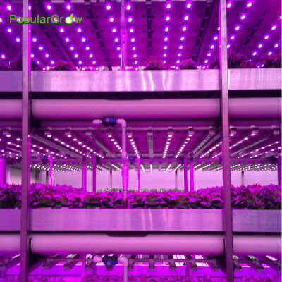 54w LED Grow Light Bar Red&Blue Hydroponics Indoor hydro Plant Lamp CA Stock