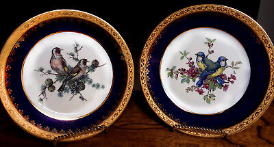 2 Vintage HAND-PAINTED BIRD PLATES w/ 24k edge, LIMOGES  France - MINT, Classic