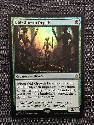 MTG X4:Old-Growth Dryads *FOIL* NM-Mint Ixalan FREE US SHIPPING! R