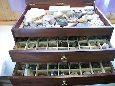 Vintage mineral and fossil collection
