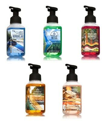 Bath & Body Works Happy Camper Gentle Foaming Hand Soap Fall Autumn Fragrance