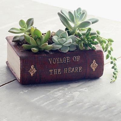 Vintage Book Succulent Flower Cactus Plant Bed Garden Planter Pot Box Case