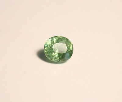0.83ct Demantoid Garnet - Rare Top Colour & Clarity Precision Cut Oval Gem