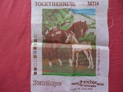Anchor/Penelope Tapestry canvas - Horse and Foal - 'Togetherness' part started